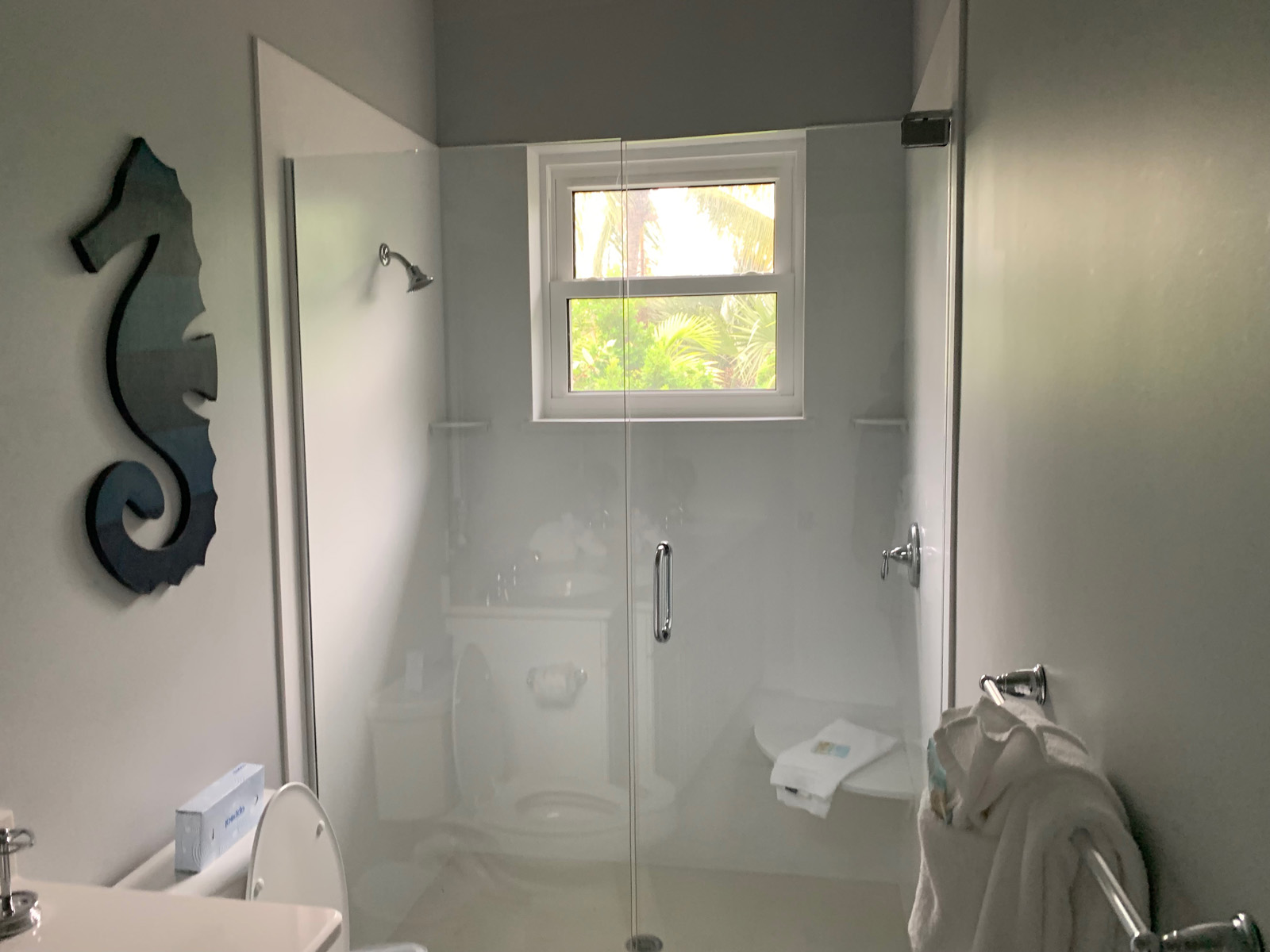 Guest Home Shower